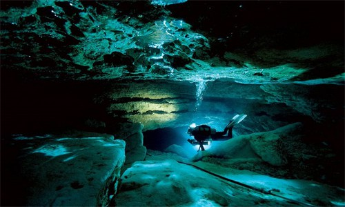 Best Springs to Dive in Florida