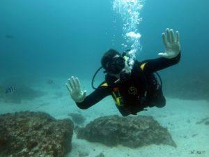 Underwater Hand Signals