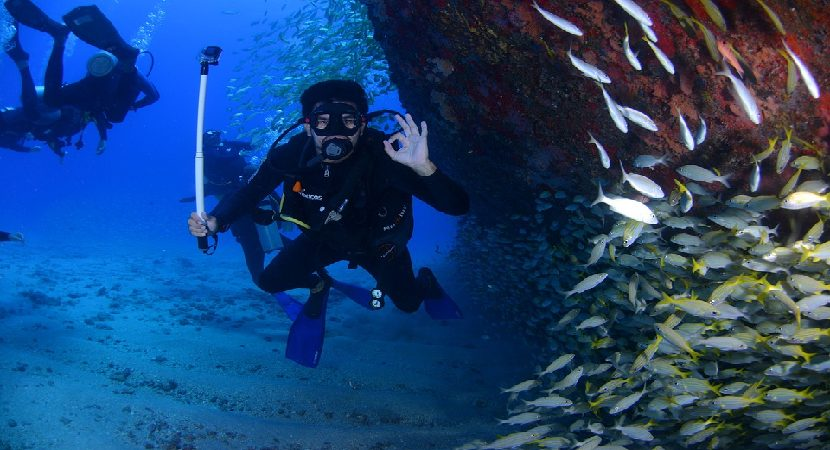 10 All Inclusive Dive Resorts in Florida
