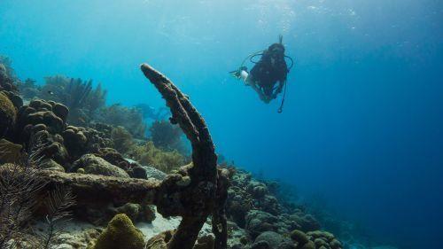 all inclusive dive resorts in florida